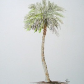Ron Berry Artwork Sabal Palm 2, 2011 Pencil Drawing, Beach