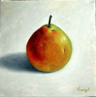 Kamal Bhandari: 'Pear', 2008 Oil Painting, Still Life.  Pear ...