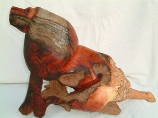Boniface Chikwenhere: 'alpha lion', 2011 Woodcut, Animals.  lion sculpture in abstract, handmade from fossilized wood. One of a kind artwork that can not be copied or reproduced.  ...