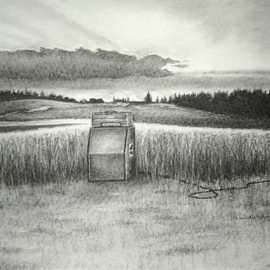 Bonie Bolen Artwork Amp In Field, 2005 Other Drawing, Nature