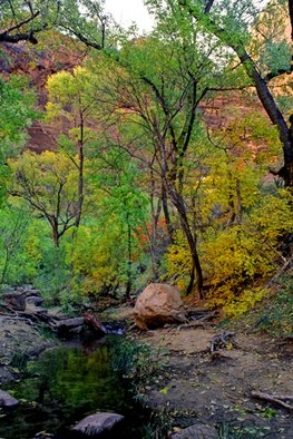 Color Photograph by Bonnie Rannald titled: Serenity at Zion, Utah, 2009