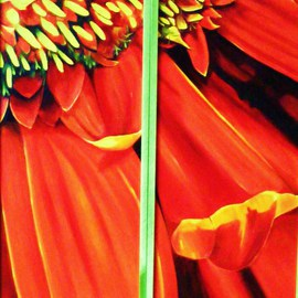 Jean Le Baron: 'Red Gerbera I, II', 2009 Oil Painting, Floral. Artist Description:  This is a diptych, each panel measures 10 inches wide by 24 inches long, and are framed separetely.  See green frame in photo. ...