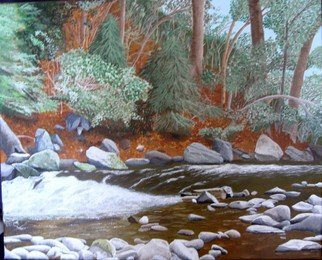 Joseph Caputo: 'The Stream', 2010 Acrylic Painting, Scenic.  Down by the stream in late fall ...