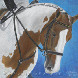 Catherin Mcmillan Artwork Collection, 2008 Pastel, Equine