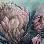 king protea By Catherine Calder