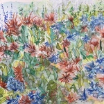 flowers in the garden By Catriona Brough