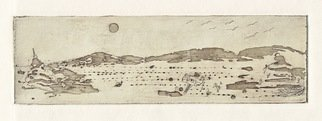 Cecilia Sassi: 'Salt Desert', 2011 Etching, Surrealism.  New life in the desert?            ...
