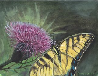 Cheryl Johnson: 'Butterfly on Thistle', 2010 Acrylic Painting, nature.  butterfly, swallowtail, thistle, floral, insects ...