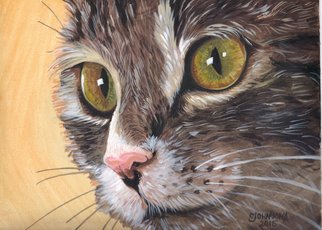Cheryl Johnson: 'Indie Cat', 2015 Acrylic Painting, nature.  cat, feline, animal, pet ...