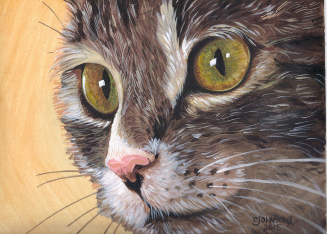 Cheryl Johnson  'Indie Cat', created in 2015, Original Painting Oil.