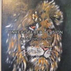 Chris Cooper Artwork African Lion Portrait, 2014 Acrylic Painting, Abstract