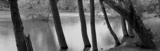 Chris Faust: 'Renville County Park', 1998 Black and White Photograph, Landscape. Artist Description:   B& W Midwest landscape River scene ...