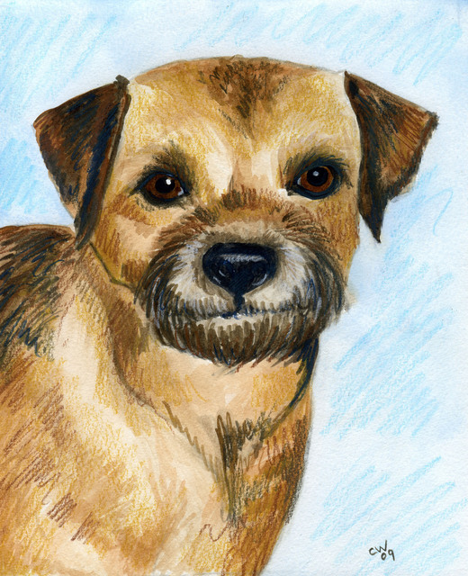 Artist Christine Winship. 'Brussels Griffon' Artwork Image, Created in 2009, Original Watercolor. #art #artist