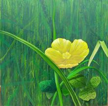- artwork Buttermarshmarigold-1361803356.jpg - 2010, Painting Oil, Figurative