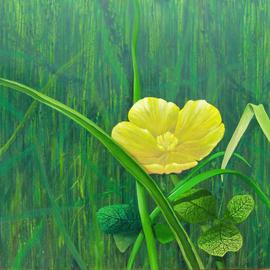 Josef Jobst: 'Buttermarshmarigold', 2010 Oil Painting, Figurative. Artist Description:   from the series: