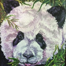 Cindy Pinnock: 'Panda', 2017 Oil Painting, Wildlife. Artist Description: Panda, cute panda, giant panda, china, Disney Framed in black floating frame, wildlife, panda portrait, face, original, oil, painting ...