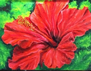 Cindy Pinnock: 'red hibiscus', 2018 Oil Painting, Floral. Artist Description: Big Bold Color.  Flower and flow. ...