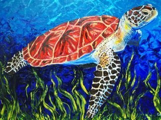 Cindy Pinnock: 'sea turtle', 2017 Oil Painting, Wildlife.