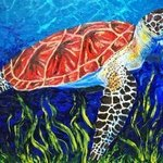 sea turtle By Cindy Pinnock