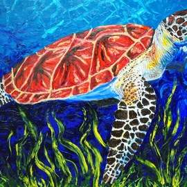 Cindy Pinnock: 'sea turtle', 2017 Oil Painting, Sea Life. Artist Description: Sea turtle, ocean like, sea life, wildlife, ocean animal, underwater, aquarium, original, painting, coral reef, ...