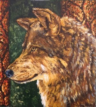 Cindy Pinnock: 'wolf', 2017 Oil Painting, Wildlife. Artist Description: wolf, timber wolf...