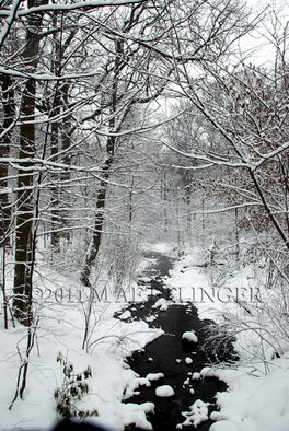 Martin A Ettlinger: 'Prospect Park Brook', 2011 Color Photograph, Nature. Artist Description:   Prospect Park Lace was taken after a heavy snowfall, in this most beautiful park in Brooklyn, New York. Photo is behind glass in a white wood frame. Watermark will not appear in photo. Frame size is 13 x 17 inches.     ...