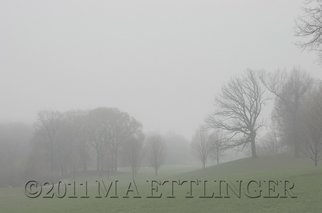 Martin A Ettlinger Artwork Prospect Park Fog, 2011 Color Photograph, Nature