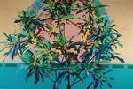 Croton Wreath