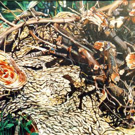 Caren Keyser: 'Old Wood', 1979 Acrylic Painting, Still Life. Artist Description: An old oak tree has been cut down and the old wood pieces piled in the weed filled grass. Colors are browns, deep purple, and green....