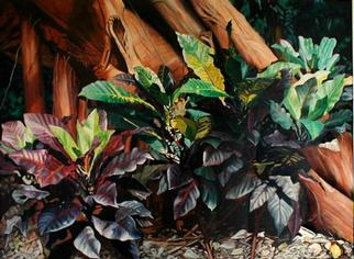 Artist: Caren Keyser - Title: The Croton and the Strangler Fig - Medium: Acrylic Painting - Year: 1980