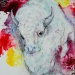 White Buffalo By Caren Keyser