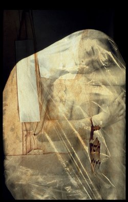 Claudia Nierman: 'Chrysalis', 2000 Cibachrome Photograph, nudes.  This image is also available printed on canvas 57 x 80. ...