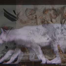 Claudia Nierman: 'Gatalina', 2007 Digital Photograph, Fantasy. Artist Description:  Printed on cotton archival photography paper or metallic photographic paper.mages can be framed or mounted on sintra with or with out acrylic. I am happy to custom made for each person's need.  ...