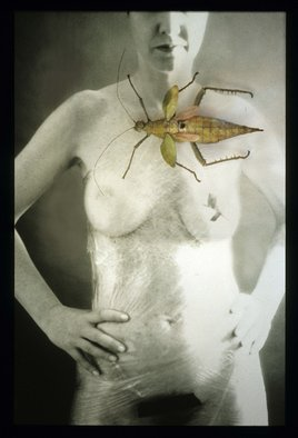 Claudia Nierman Artwork Strange beauty, 2000 Cibachrome Photograph, Nudes