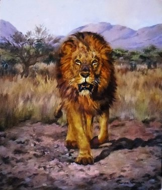 Wildlife Oil Painting by Sonja Grobler titled: The Lion Approaches , created in 2013