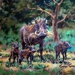 Warthog Family By Sonja Grobler