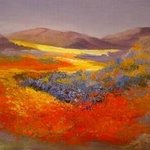 Namaqualand Dream By Colleen Balfour