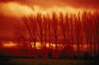 Corrie Ancone: 'WINTER DUSK', 2010 Color Photograph, Landscape. Artist Description:  photographic overlay...