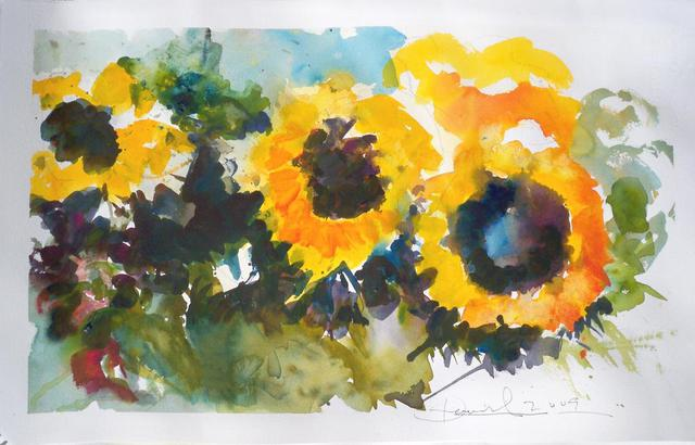 Daniel Clarke  'Lucys Sunflowers', created in 2009, Original Drawing Graphite.