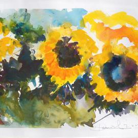 Lucys Sunflowers