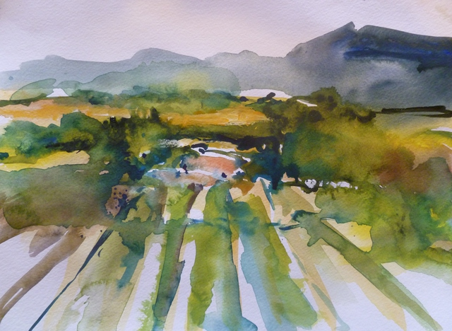 Daniel Clarke: Napa Scene, 2011 Watercolor