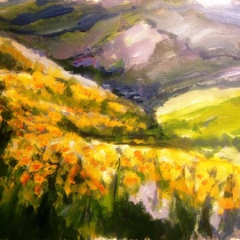 Daniel Clarke: 'california poppies', 2017 Acrylic Painting, Landscape. Artist Description: Along the coastal highway California poppies invite us to our golden state Acrylic on board...