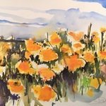 Socal Poppies Last Call, Daniel Clarke