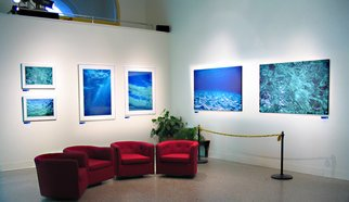 Daniel Rabinovich: 'Ocean Impressions photography exhibition', 2006 Color Photograph, Seascape.  Ocean Impressions, underwater, photography exhibition      ...