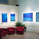 Ocean Impressions photography exhibition By Daniel Rabinovich