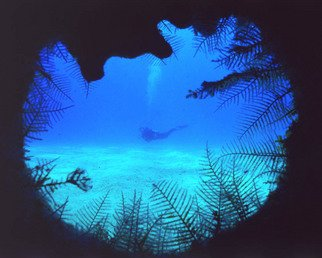 Daniel Rabinovich: 'Porthole ', 2002 Color Photograph, Seascape.   Ship wreck, Ocean, sea, tropical, underwater, Bahamas, scuba diving, water   ...