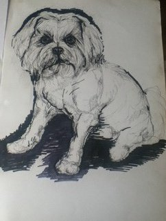 Daniela Vasileva Artwork Dog , 2016 Ink Drawing, Dogs