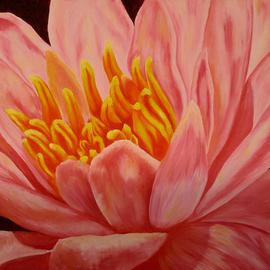Darla Brock: 'Pink Water Lily', 2009 Oil Painting, Floral. Artist Description:  Oil painting on canvas ...
