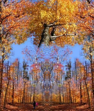 Dave Martsolf: 'Crown Trail Blazing', 2009 Giclee, Seasons.  Photomanipulation printed on canvas and stretched on strips with white edge ready for framing.  Photography shot in Pillsbury State Park, Lempster, New Hampshire in October 2008. ...