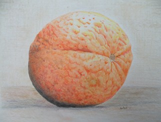 Still Life Pencil Drawing by Dave Martsolf Title: Orange, created in 2011